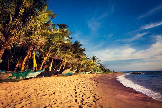Jongerenrondreis naar Sri Lanka