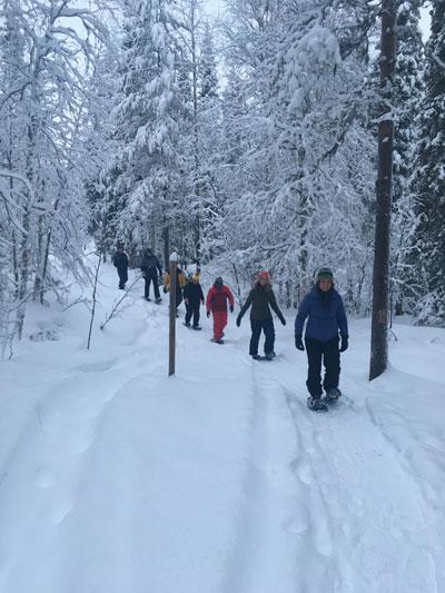 Sneeuwandeltochten in Lapland